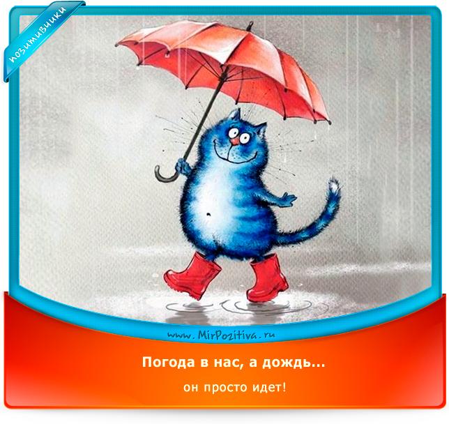 Погода в нас, а дождь... он просто идет.