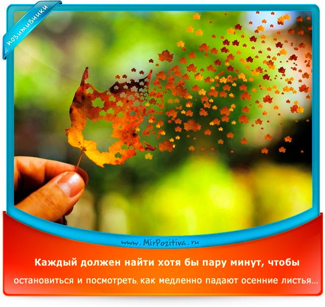 Каждый должен найти хотя бы пару минут, чтобы остановиться и посмотреть как медленно падают осенние листья
