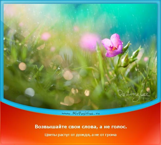 Возвышайте свои слова, а не голос. Цветы растут от дождя, а не от громa
