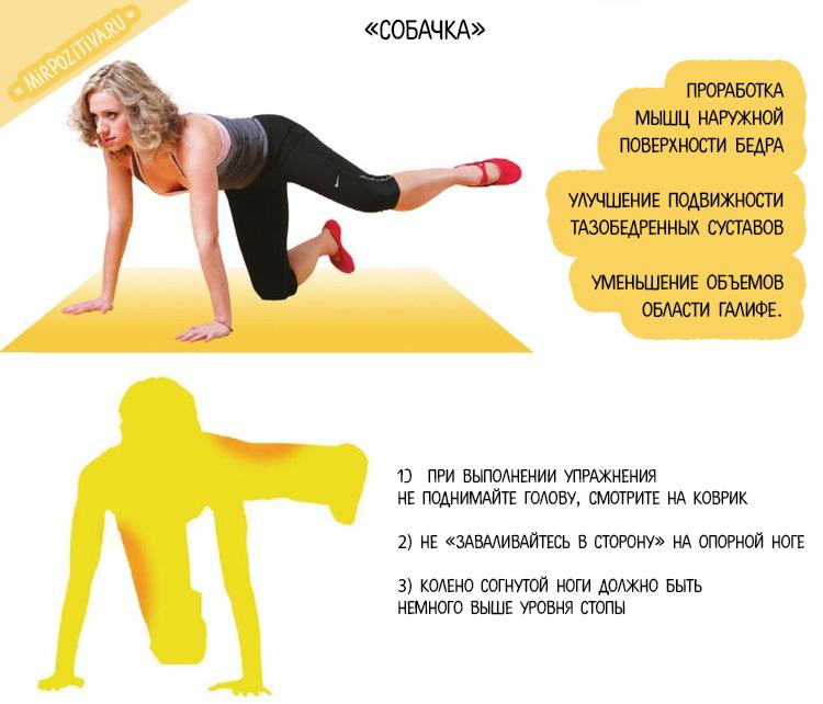 упражнение собачка с Мариной Корпан