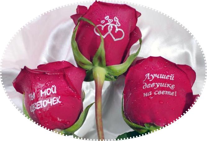 розы с комплиментом