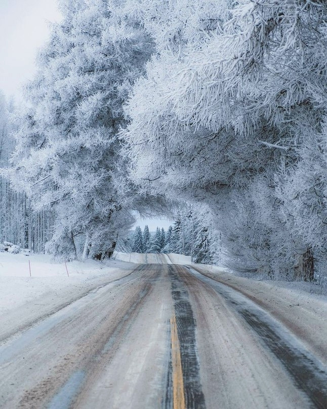 Мороз и зима рисуют как гениальные художники