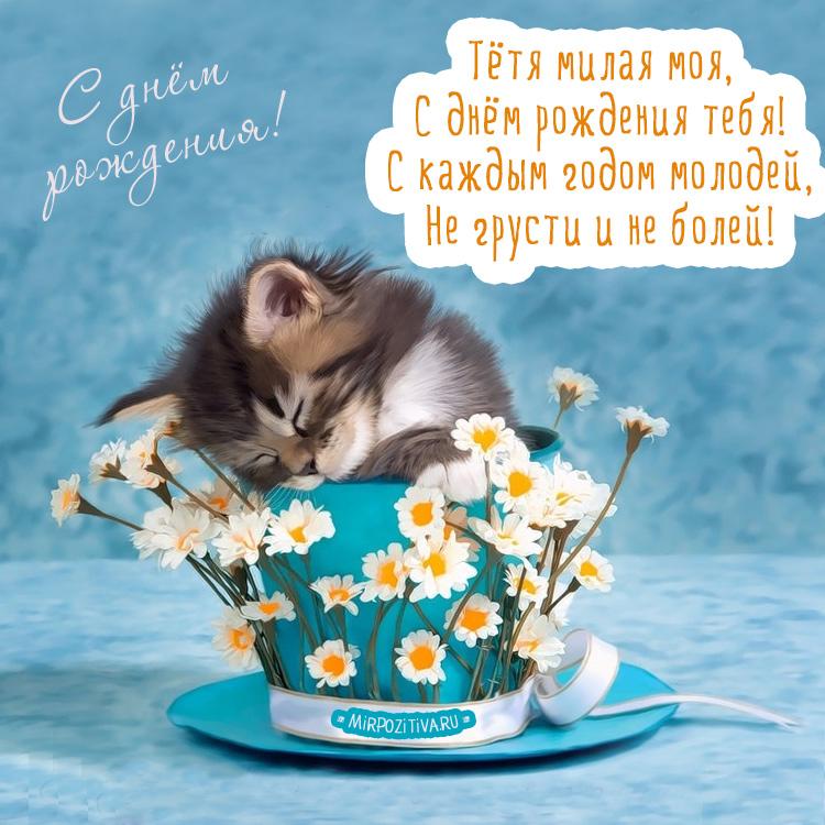 открытка тете с котенком - Тетя милая моя, С днем рождения тебя! С каждым годом молодей, Не грусти и не болей.