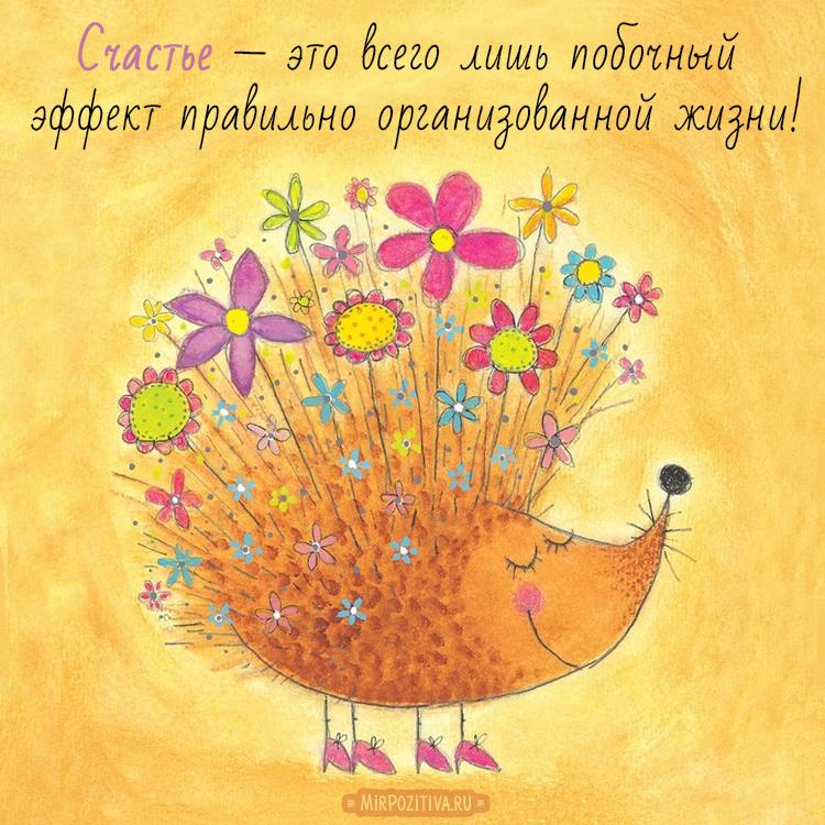 Счастье — это всего лишь побочный эффект правильно организованной жизни!