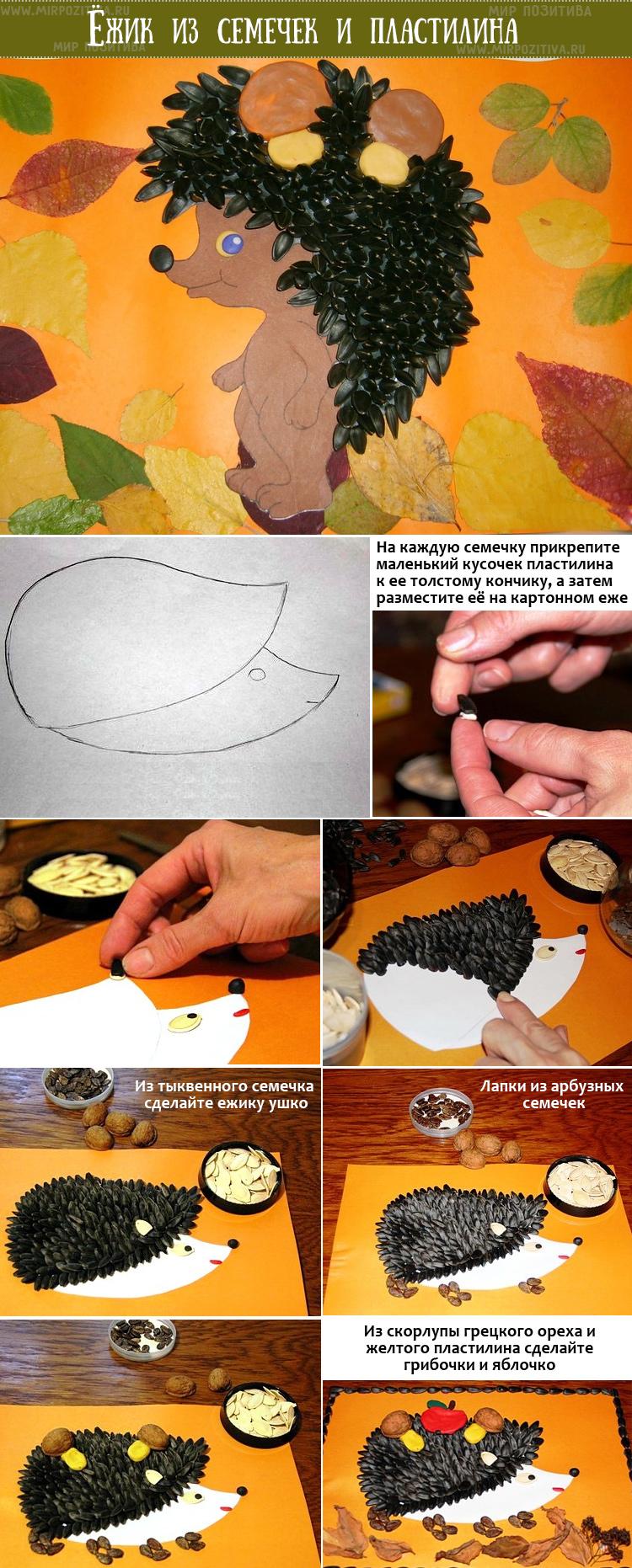 поделка еж из семечек и орехов на картоне