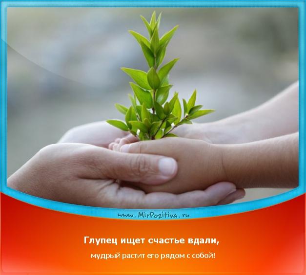 Глупец ищет счастье вдали, мудрый растит его рядом с собой!