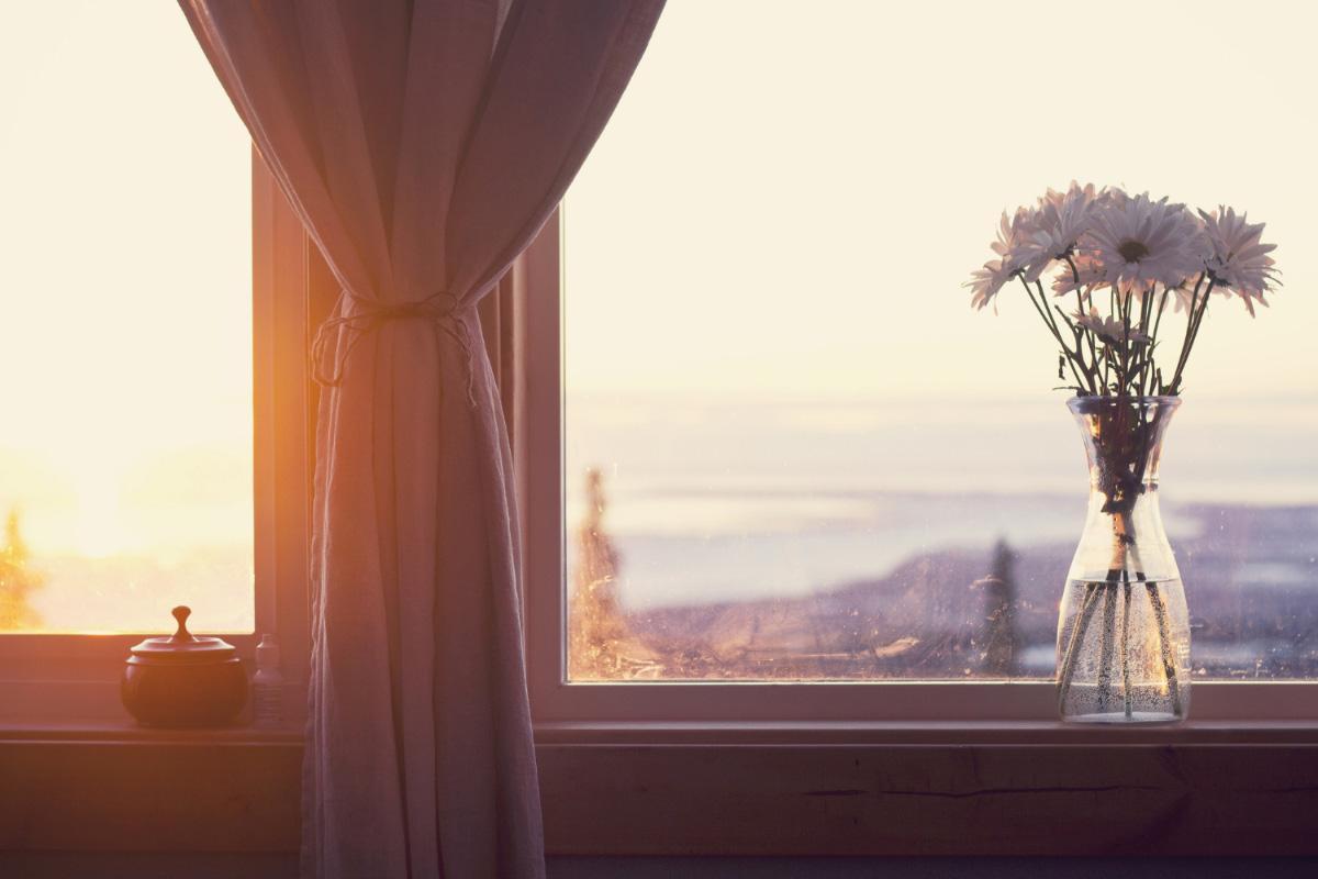 окно, утро