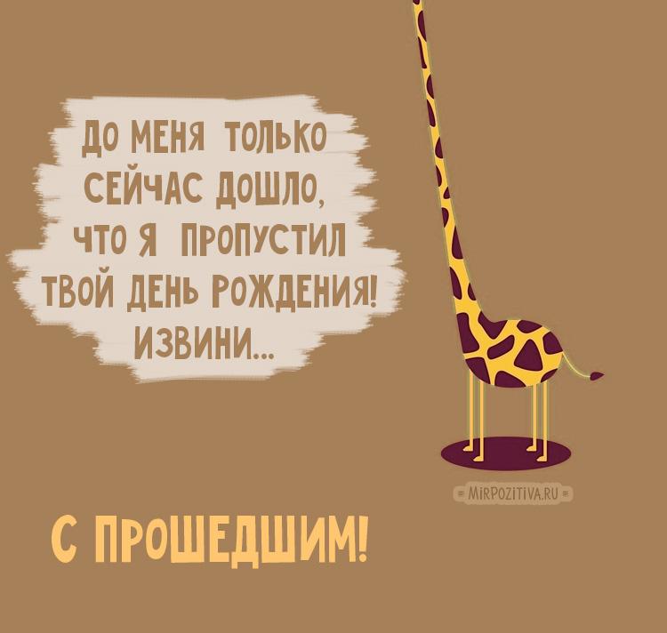 жираф, с прошедшим