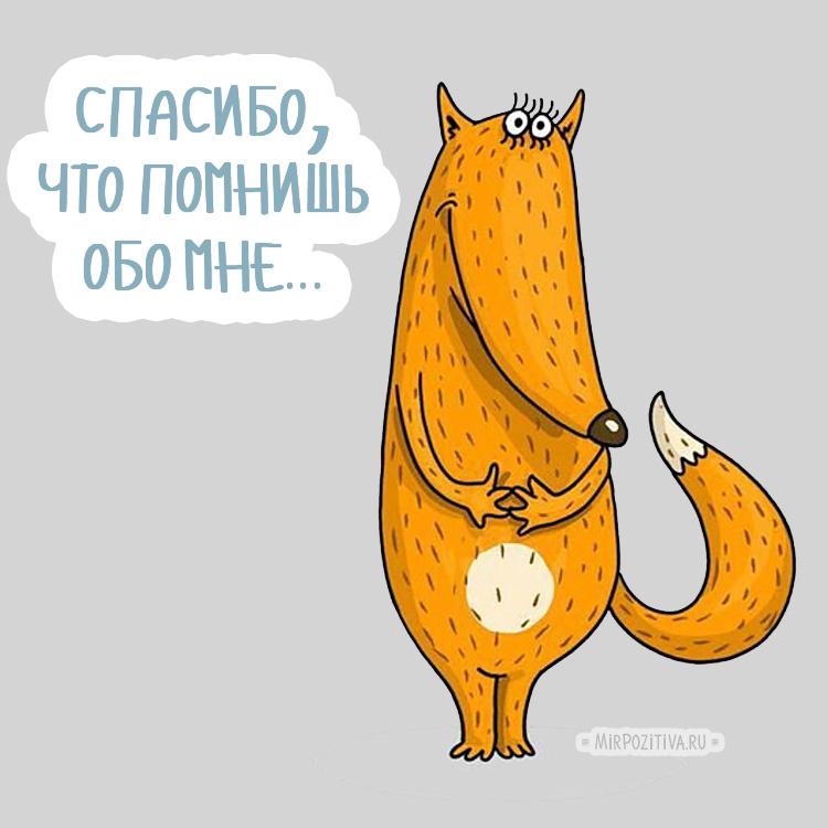 что помнишь обо мне, лисичка