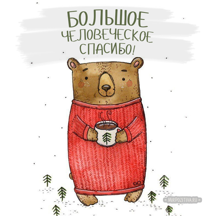 человеческое спасибо от медведя