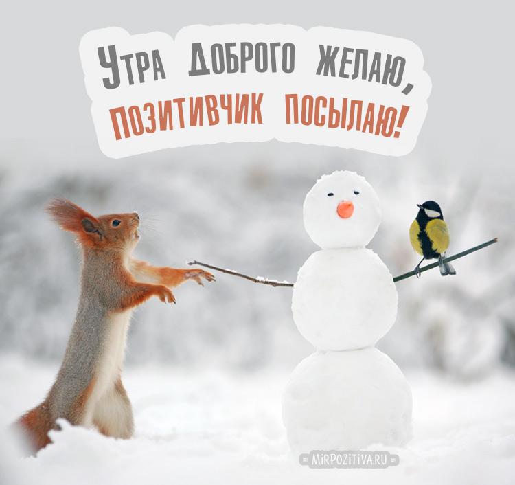 белочка и снеговичок