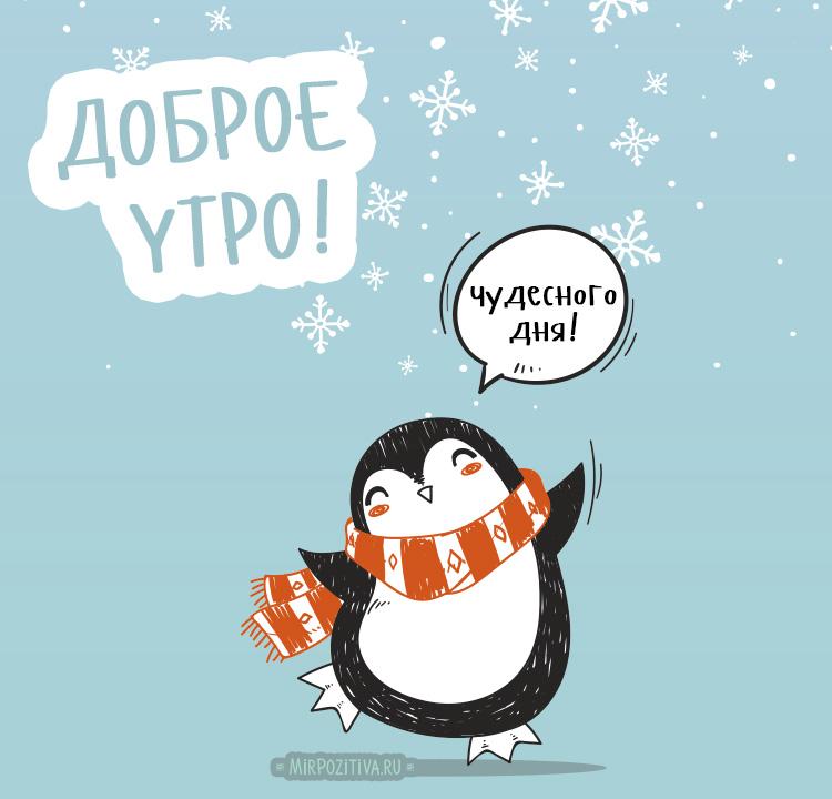 Красивые и прикольные картинки с пожеланием зимнего Доброго утра!