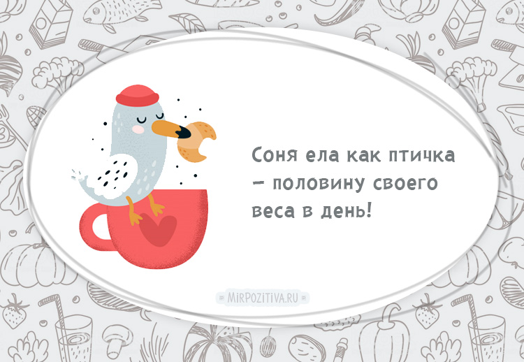 птичка ест