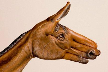 Изображение лошади на руках