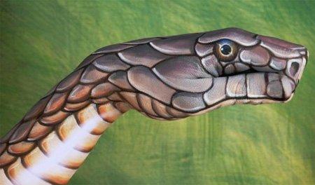 Изображение змеи на руках