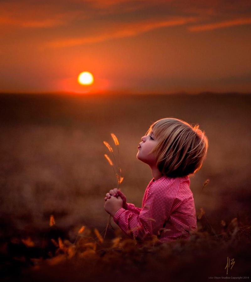 счастье в мелочах. мальчик на закате в поле