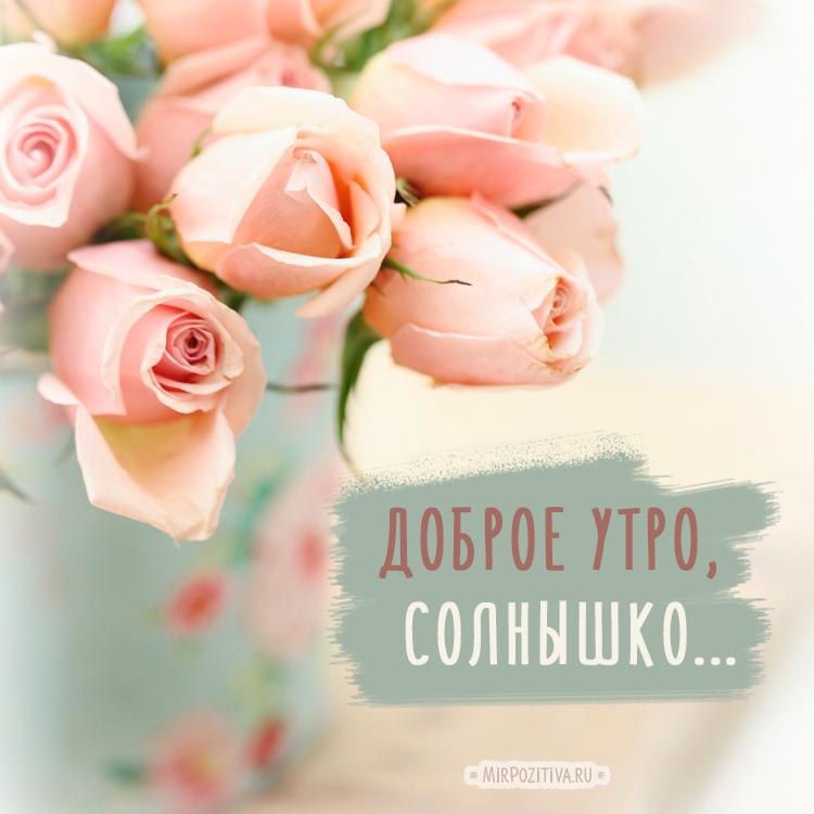 цветы для солнышка моего