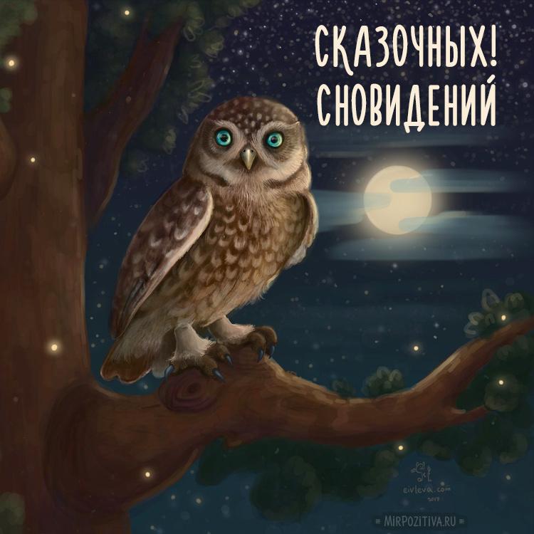сова сказочных сновидений желает
