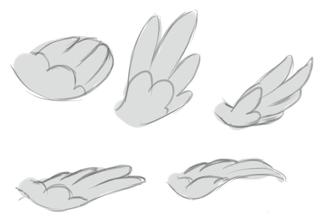 крылышки
