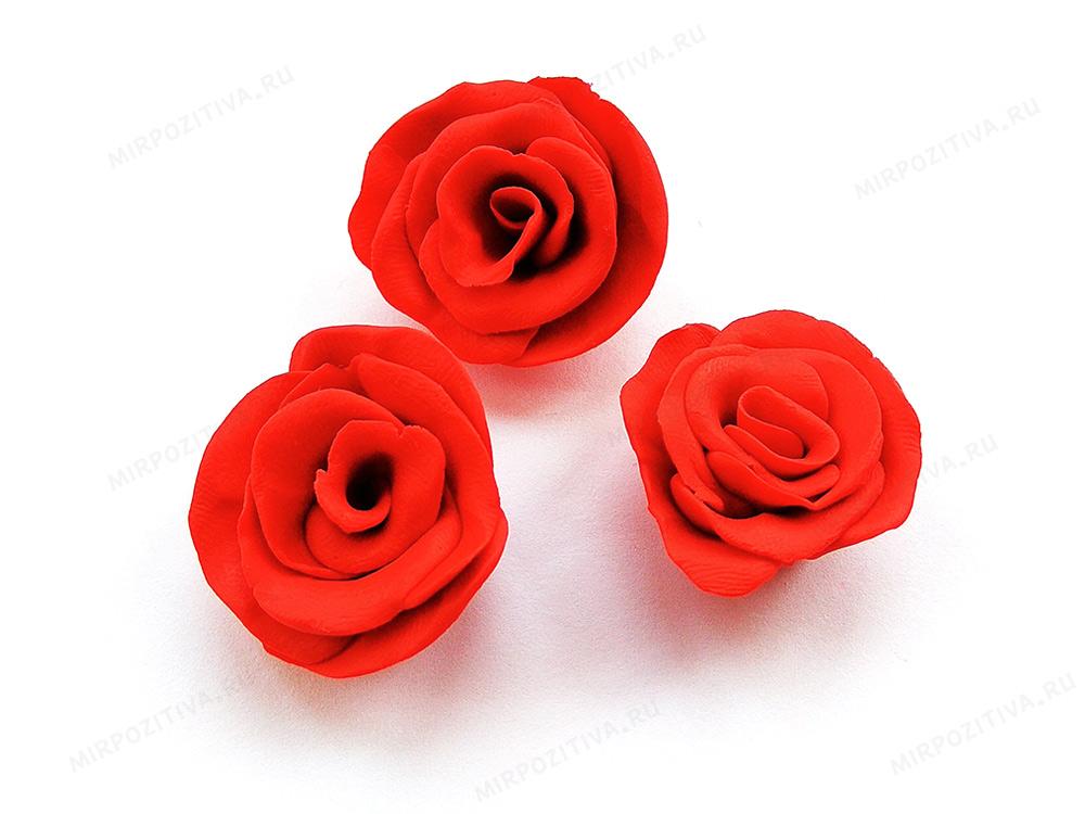 03 бутоны роз